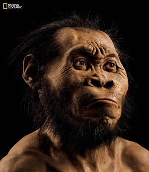 homo_naledi_from_the_dinaledi